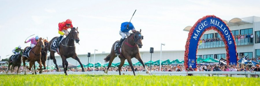 Photo From Magic Millions Website